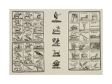 Page Of Various Designs Including an Animal Alphabet  Plants and Objects