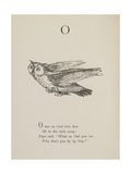 Owl Illustrations and Verses From Nonsense Alphabets Drawn and Written by Edward Lear