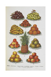Assorted Fruits Including Pineapple