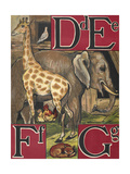 Letters D  E  F and G D For Dove E For Elephant F For Fox and Fowls G For Giraffe