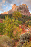 View Inside Zion Canyon