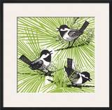 Chickadees in Tree