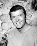 Robert Reed - The Brady Bunch