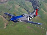 A P-51D Mustang in Flight Over Hollister  California