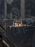 A Rescue Dog Is Transported Out of the Debris of the World Trade Center