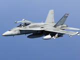 A CF-188A Hornet of the Royal Canadian Air Force