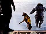 A US Soldier And His Military Working Dog Jump Off the Ramp of a CH-47 Chinook