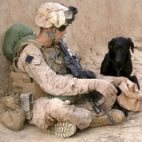 A Dog Handler Gives Water To His Dog While On a Patrol in Afghanistan