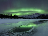 Reflected Aurora Over a Frozen Laksa Lake  Nordland  Norway