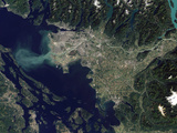 Satellite View of the Frasier River  British Columbia  Canada