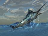 An Iridescent Blue Marlin Bursts from Ocean Waters