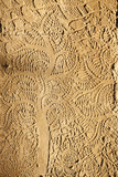 Angkor Wat  Carved Detail on Wall  Tree