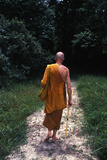 European Monk at Wat Suanmokh Forest Monastery