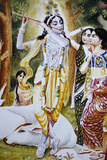 Krishna and the Gopi as Depicted on a Hare Krishna Calendar