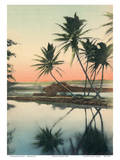 Coconut Lagoon - Hawaii & South Seas Curio Company