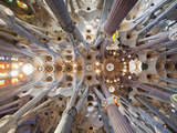 Spain  Barcelona  Sagrada Familia  Interior