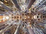 Spain  Barcelona  Sagrada Familia  Interior