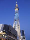 Japan  Honshu  Kanto  Tokyo  Asakusa  Skytree Tower