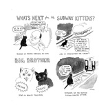 """""""What's next for the Subway Kittens"""" - Cartoon"""