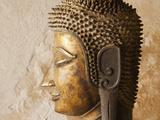 Laos  Vientiane  Wat Sisaket  Buddha Statues