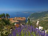 Jardin Exotique in Eze  Cote D´Azur  Alpes-Maritimes  Provence-Alpes-Cote D'Azur  France