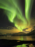Aurora Borealis  Northern Lights  Troms Region  Norway