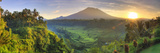 Indonesia  Bali  Redang  View of Rice Terraces and Gunung Agung Volcano