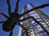 Japan  Tokyo  Roppongi  Mori Tower and Maman Spider Sculpture