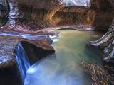 USA  Utah  Zion Canyon National Park  the Subway