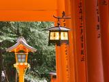 Asia  Japan  Honshu  Kansai Region  Kyoto  Fushimi-Inari Taisha Shrine