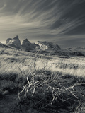 Chile  Magallanes Region  Torres Del Paine National Park  Landscape by Salto Grande Waterfall