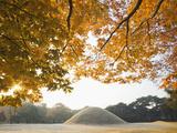 South Korea  Gyeongju  Royal Tomb of King Naemul of Silla