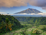 Indonesia  Bali  Rendang Rice Terraces and Gunung Agung Volcano