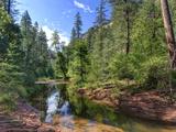 USA  Arizona  Sedona  Oak Creek Canyon  West Fork Trail