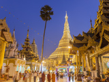The Great Golden Stupa  Shwedagon Paya (Shwe Dagon Pagoda)  Yangon (Rangoon)  Myanmar (Burma)