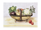 Still Life with a Trug of Vegetables  1996