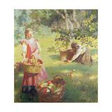 Apples  1912