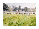 Looking across Christ Church Meadows  1989