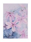 Lilies  Pink Auratum