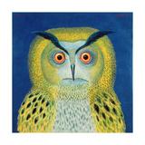 Stock Owl  1999