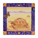Tortoise  1998
