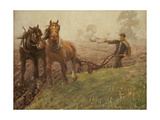 Man Ploughing a Field