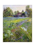 Dwarf Irises and Cottage  1993