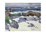 A Rocky Shore  Iona