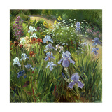 Irises and Oxeye Daisies  1997