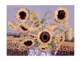 Sun Queen  1995