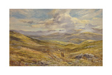 Cairngorms from Kinrara  1988
