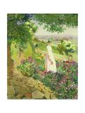 Summer  1917