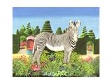 Zebra in a Garden  1977