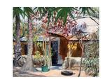 Samba's House  2005